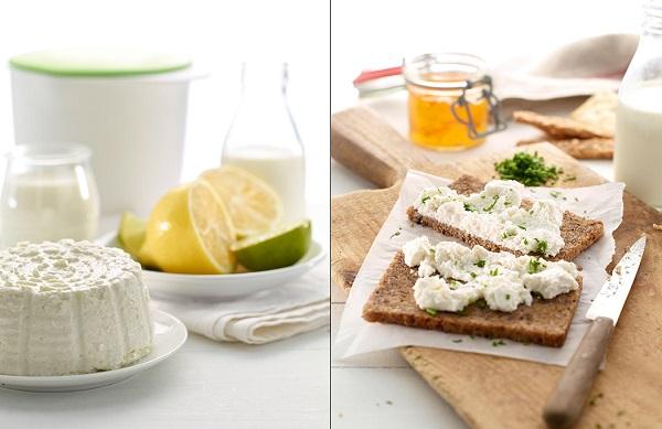 Fromage frais maison rapide et facile cheese maker