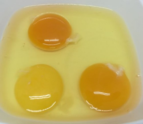 Couleur du jaune d'œuf