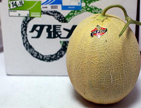 les fruits les plus chers du monde Yubari