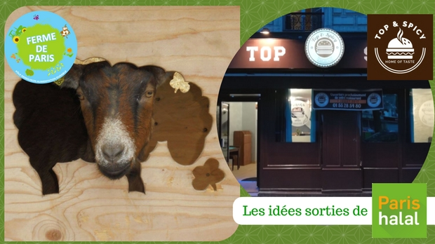 animaux, ferme, enfant, top & spicy, restaurant, halal,